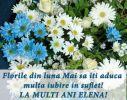 Pentru draga mea Elena