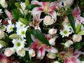 O duminica de Florii minunata!