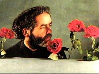 Frumosi trandafiri...