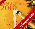 Anul Nou 2010