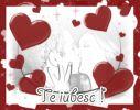 Mesaj de Sf. Valentin